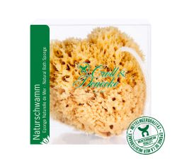 Natural sponge in Gift box